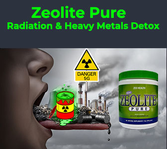 heavy metals detox